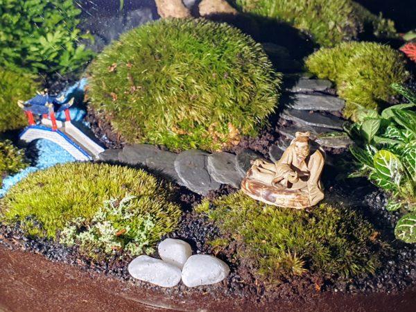 Jardin Japonais Bonsaï Carmona Vue 3, Terrariums créations végétales Lille Nat&Sens